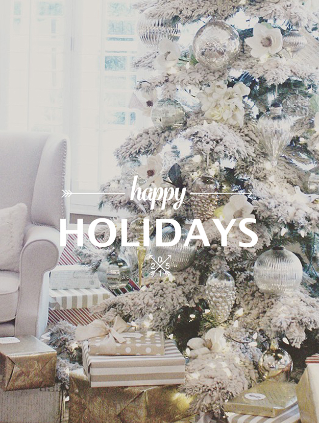 Happy Holidays 2015 Christmas Card Design Overlay