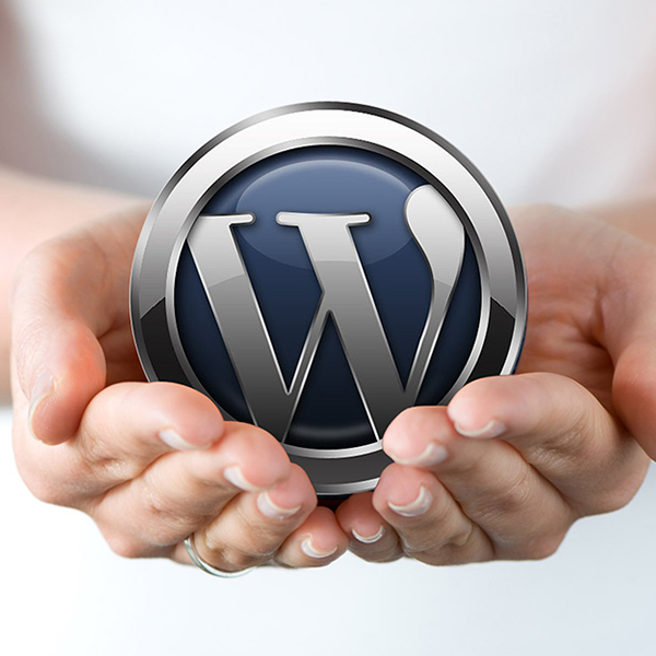 Step 5: Install WordPress on Bluehost