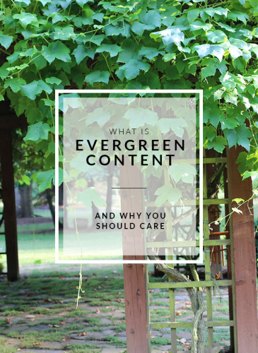 What is Evergreen Content? And why you should care.