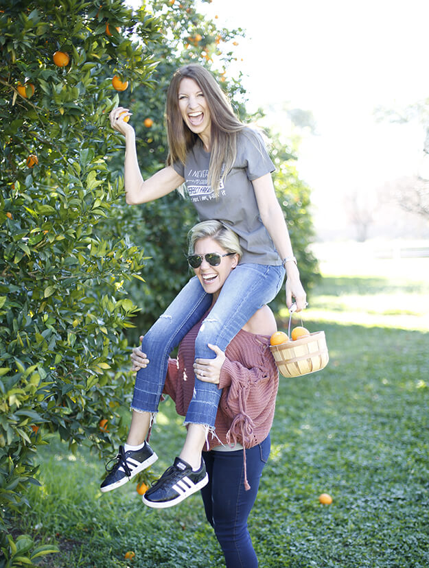 Your Marketing BFF picking citrus agritopa farm