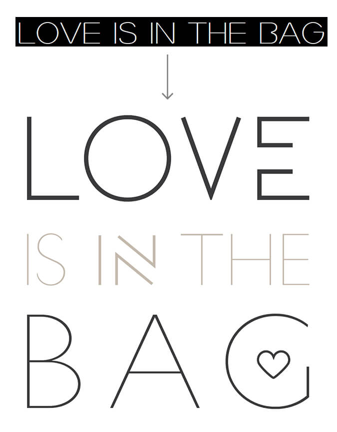 Love Is In The Bag_old logo designs
