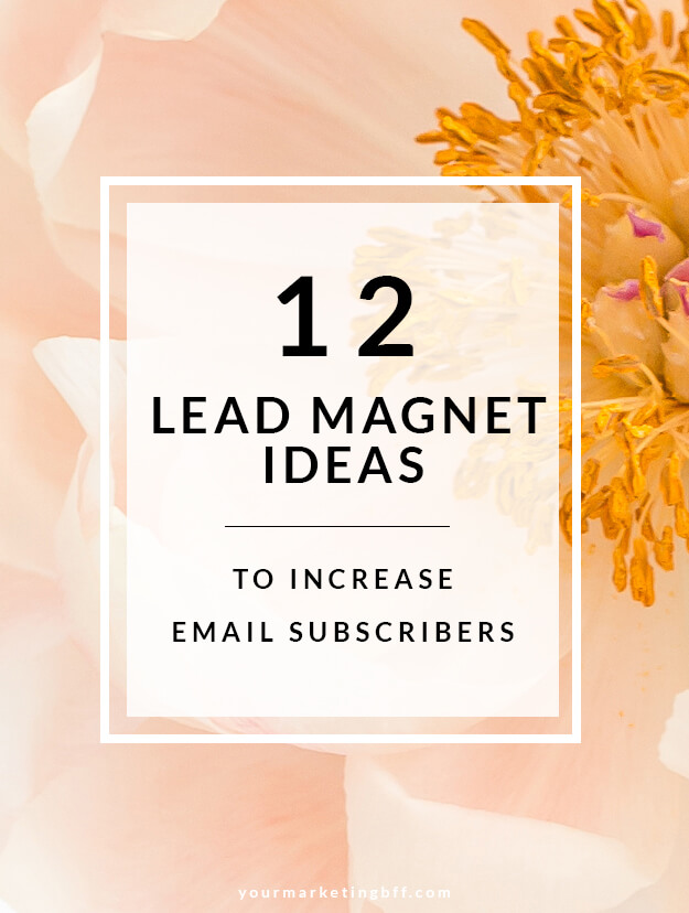 12 Lead Magnet Ideas To Increase Email Subscribers